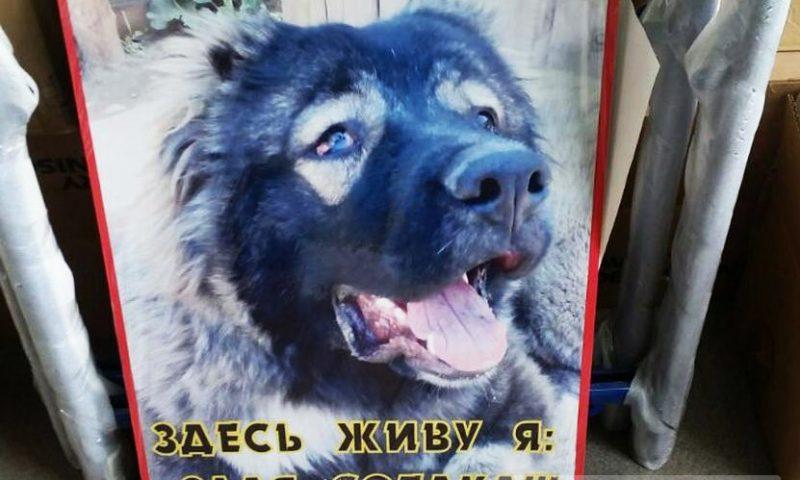 Предупреждающая табличка Злая собака